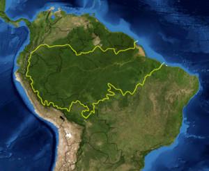 Se considera que la extención de la Amazonía llega a los 6 millones de km² repartidos entre ocho países.